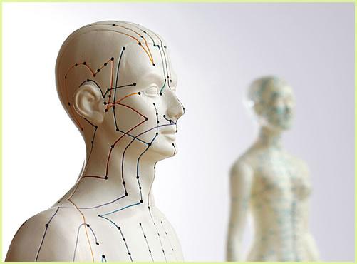 Therapien - Praxisschwerpunkte